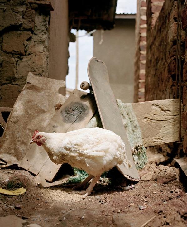 Agroskate en Uganda
