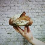 Panic o la honestidad en pan
