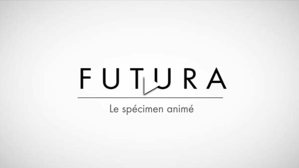Tipografía cinética Futura video